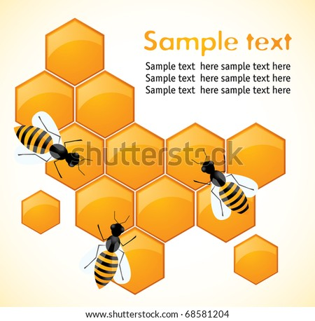 Bees and honeycombs - stock vector