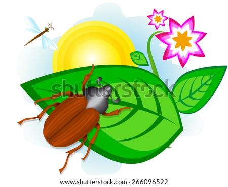 Beetle on leaf - stock vector
