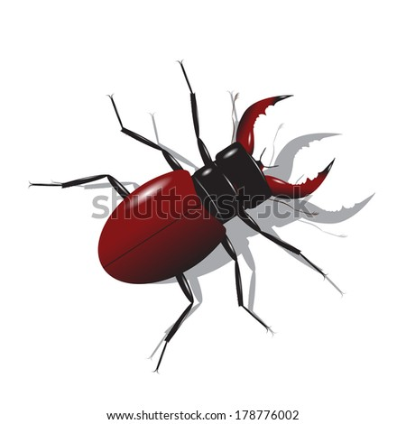 Beetle. Unusual insect with a red body and horns on a white background. - stock vector