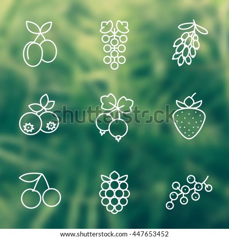 Berries line icons set, raspberry, blueberry, cherry, grape, strawberry, barberry, plums, vector illustration - stock vector