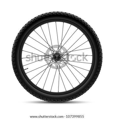 Bicycle wheel. Vector.