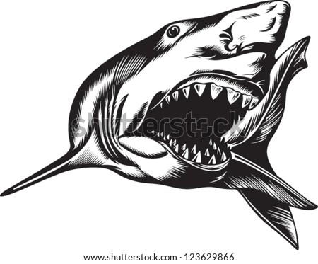 Big aggressive shark with open mouth - stock vector
