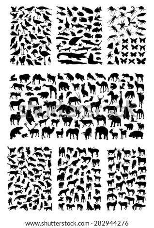 Big animals silhouettes set - stock vector