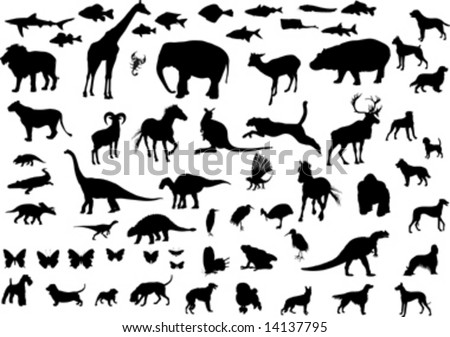 Big collection of animals silhouettes; vector