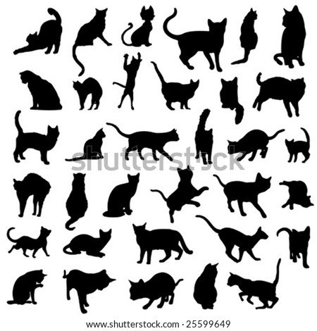 big collection of cat silhouettes - stock vector