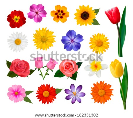 Big collection of colorful flowers. Vector illustration. - stock vector