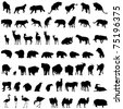 Big collection of different animal silhouettes - stock photo