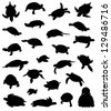 Big collection of silhouettes of turtles - stock vector