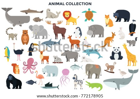 Big Collection Wild Jungle Savannah Forest Stock Vector