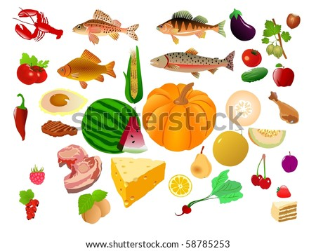 big food collection - stock vector