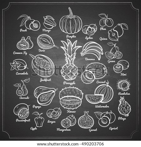 Big fruits collection. Pineapple, bananas, pumpkin, mango, passion, papaya, apple, melon, avocado, fig, kiwi, apricot, garnet, peach, plum, lychee and oth. Outline chalk pained on chalkboard vector.