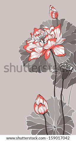 Big lotus on grey background - stock vector