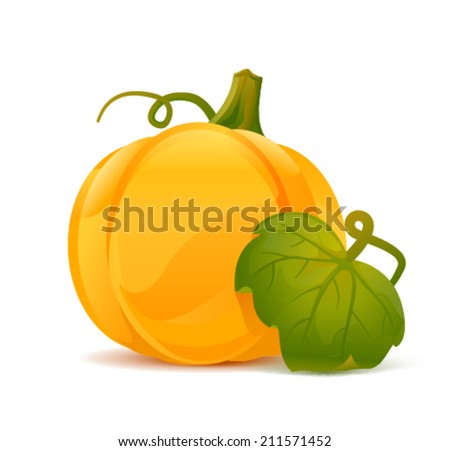 Big realistic pumpkin with green leaf, eps10 illustration make transparent objects and opacity masks - stock vector