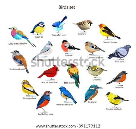 big set birds. birds flying, animals, bird silhouette, bird vector.Abstract art bird, Logo birds icon set vector illustration - stock vector