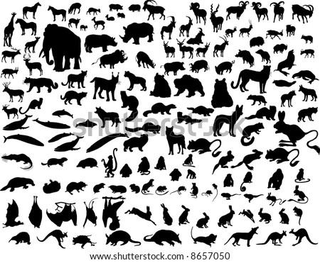 Big Set of  Animal Silhouettes in Different Poses. Zoo, Wildlife, Sea Life Almost Each Kind of Fauna Represented in set. High Detail. Vector Illustration. - stock vector
