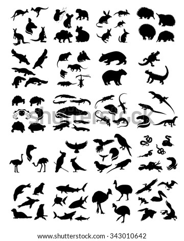 Big set of Australian animals silhouettes. Icons and illustrations of animals. Wild animals pattern. - stock vector