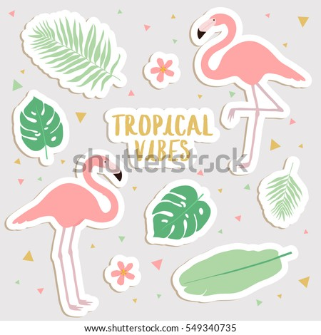 Big set of cute cartoon tropical stickers with palm leaves and flamingos cute stickers