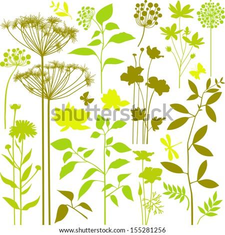 Big set of green plants - stock vector