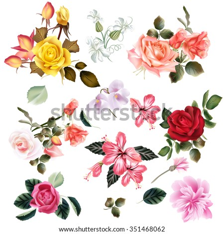 Big set of realistic vector flowers for design - stock vector