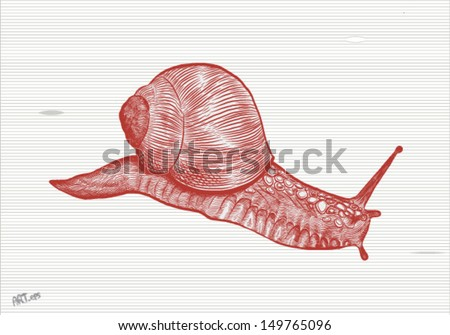 big snail on the way - stock vector