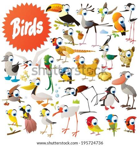Big vector birds set - stock vector