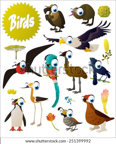big vector cartoon comic birds set: vulture, kiwi, eagle, emu, frigate, quetzal, umbrella bird, grouse, penguin, quail, stilt - stock vector