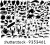 Big vector collection of different mollusks and other invertebrates - stock photo