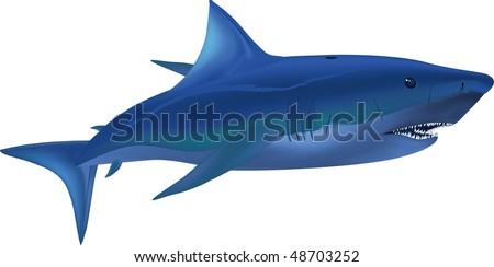 big white shark - stock vector