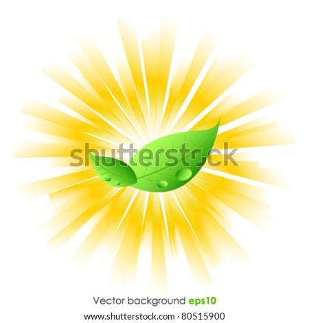 Bio background - stock vector
