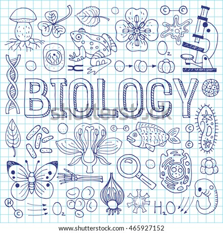 Coloring Pages Ecology