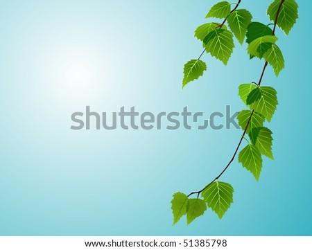 birch foliage on blue sky background - stock vector