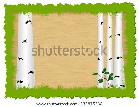 Birch in box of grass - stock vector