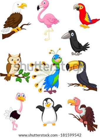 Bird cartoon collection - stock vector