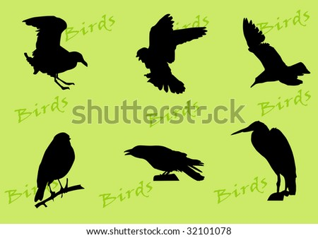 bird.ector - stock vector