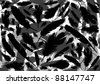Bird feathers background illustration - stock vector