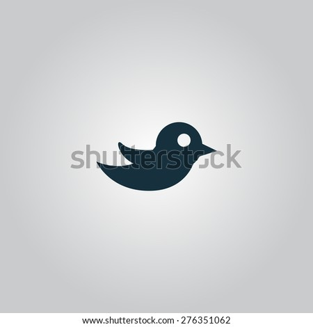 Bird. Flat web icon or sign isolated on grey background. Collection modern trend concept design style vector illustration symbol