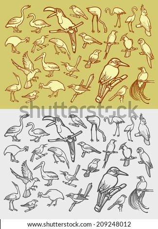 Bird icons sketch. Vintage and drawing, color, black and white hand drawn style vector. Good use for mascot, symbol, icon, or any design you want. Easy to use, edit, or change color.