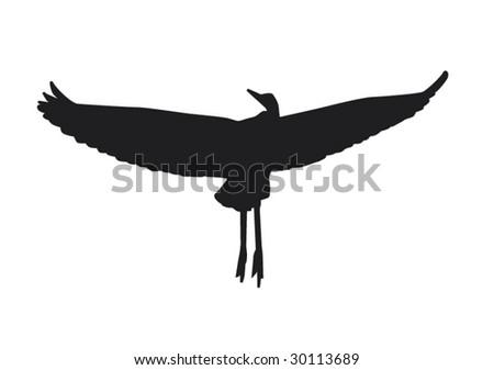 Bird in Flight - stock vector