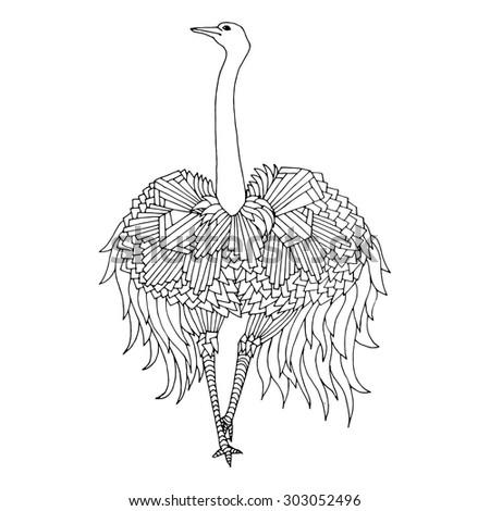 "bird named ""Greater Rhea"" - stock vector"