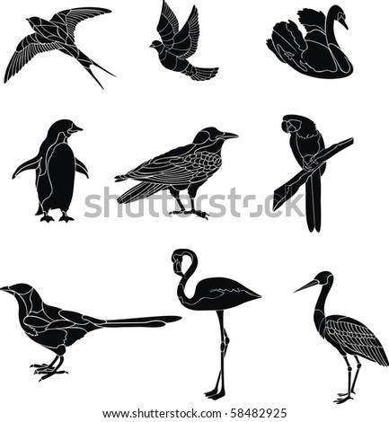 bird set - stock vector
