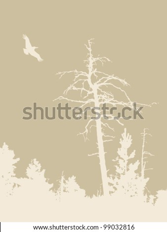 bird silhouette on brown background, vector illustration