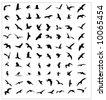 Bird silhouettes set - stock vector