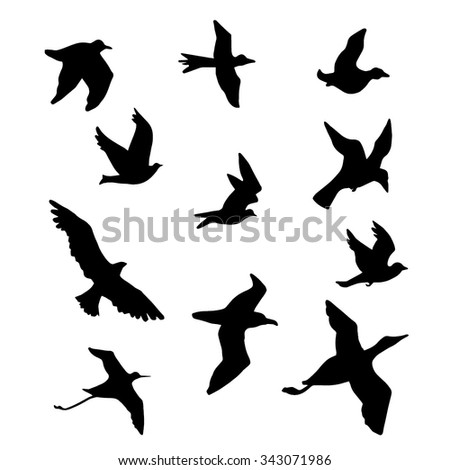 Bird silhouettes vector illustration (logo, icon,drawing) - stock vector