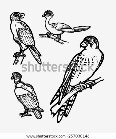 Bird sketches vector set 1. Good use for sticker design, symbol, icon, illustration, or any design you want. Easy to use, edit, or change color. Each object is a group. - stock vector