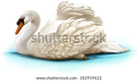Bird swan swims on a white background - stock vector