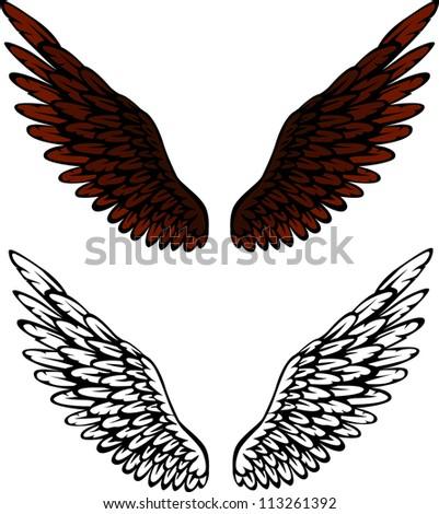 Bird wings - stock vector