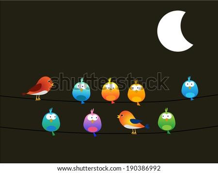 Birds at night - stock vector