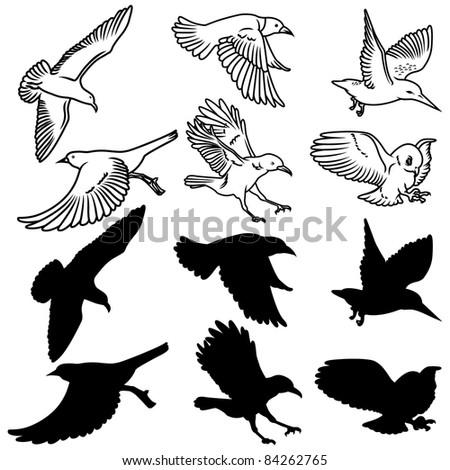 Birds Design Set - stock vector