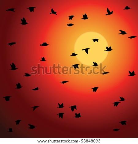 Birds flock against sunset. Vector Illustration. - stock vector