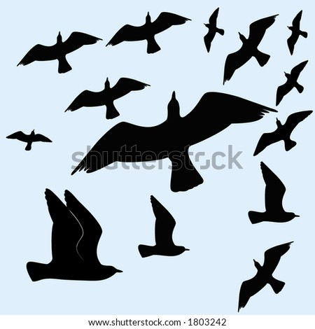 birds flocking - stock vector